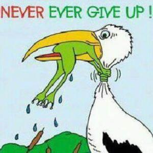 C22_Perseverance