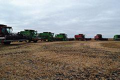 CFGB Harvest