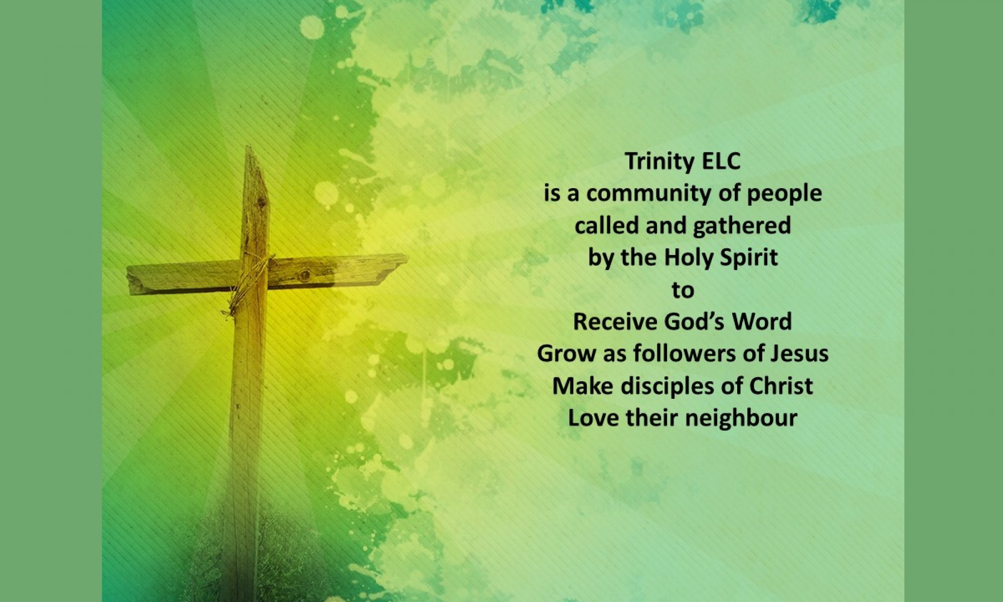 Trinity ELC